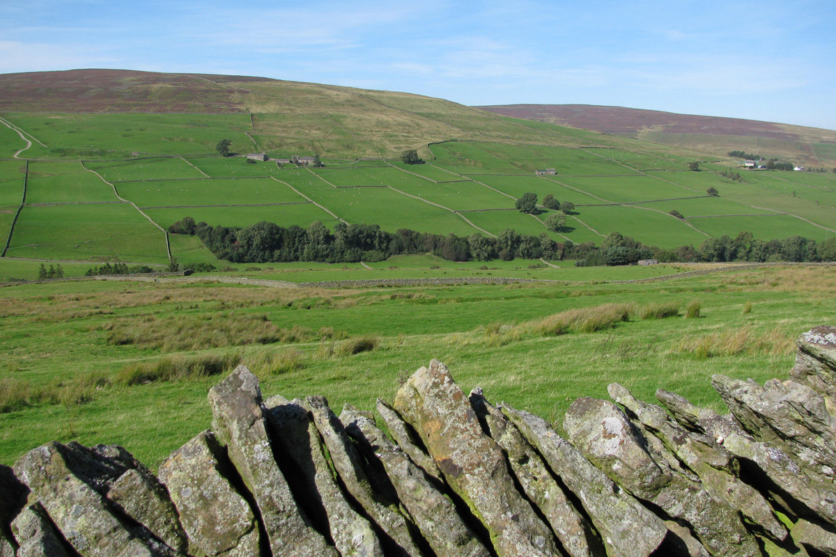 Pennine Way near Broadmea